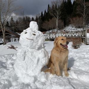 大きな雪だるま♪