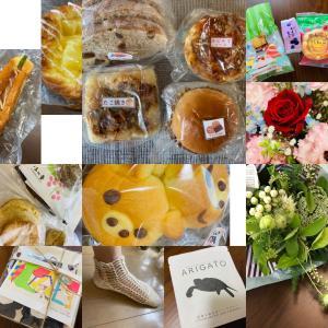 【8月のご予約受付中です】秋田県由利本荘市 よもぎ蒸しサロン ほの香