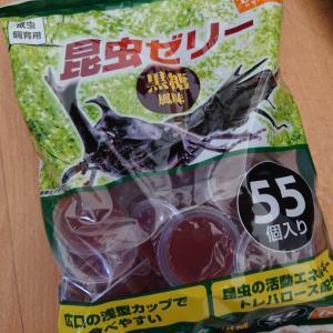 昆虫ゼリー(`・ω・´)
