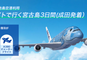 ANA FLYING HONU 下地島空港利用 チャーターフライトで行く宮古島3日間(2021年9月)