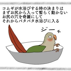 4コマ絵日記 & ピンポン & 鳥ごやベーカリー