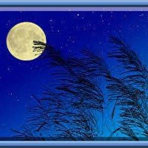 9月は敬老の日|中秋の名月|お彼岸|など秋らしい行事が目白押し、でも体調管理には一番要注意な月でもある!!