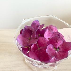 夏らしく、花を思う存分楽しむ方法
