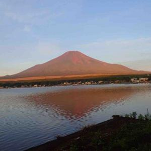 山中湖畔ロードと明神山トレイル18km &フルーツトマト