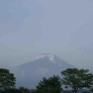 第10回 富士忍野高原トレイルレース レポート