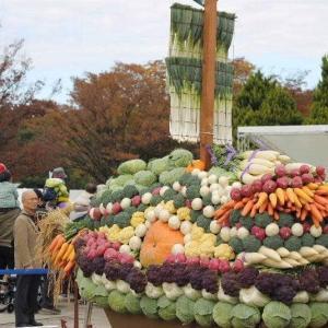 農業祭なう