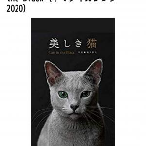 「美しき猫」カレンダー2020年版★千秋が?!