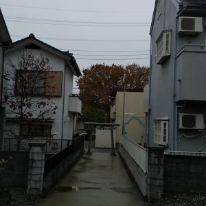 今日の神社 11月22日(金曜日)