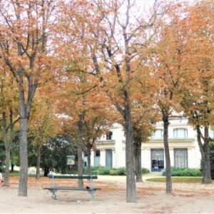 秋のParis