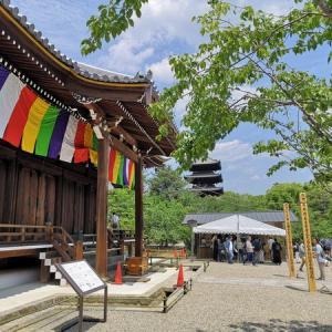 仁和寺 観音堂修復落慶記念特別内拝に行きました