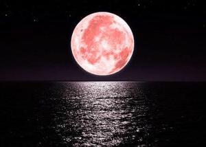今日は射手座満月!
