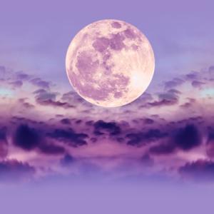 今日は魚座満月&中秋の名月