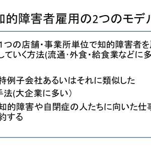 【スライド紹介】就労支援の実際と今後の方向性②