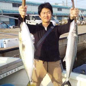 鳴門海峡にてイワシの泳がしでゲット