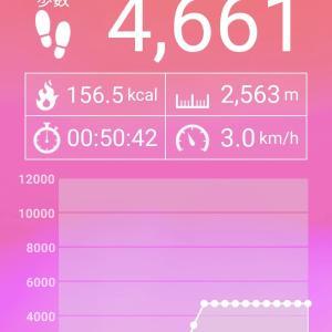まぁ散歩:159(2020.01.24)
