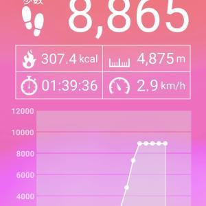 まぁ散歩:163(2020.02.21)