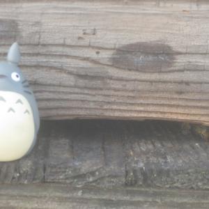 蜜蜂inこはるのハウス