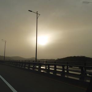 17戦目    黄色い太陽
