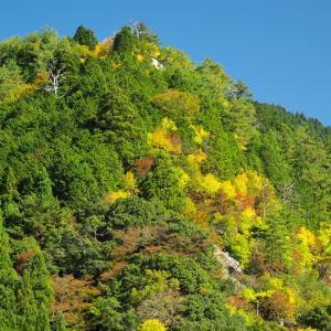 芦津渓谷の紅葉
