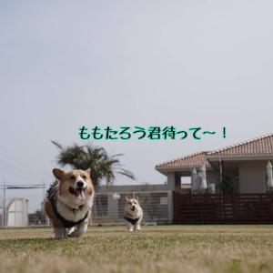 ☆&WAN☆【エースorエースパパ編】