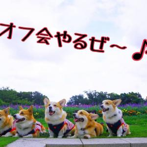 ☆BROKE HOUSE MIKI☆【オフ会開催のお知らせ】