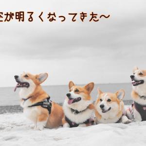 ☆稲毛の浜で…☆【雨のち晴れ】
