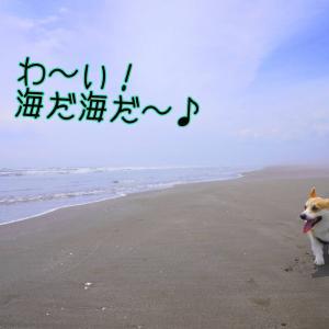 ☆ちばコギ3周年☆【前夜祭】