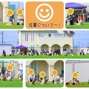 ☆ちばコギ3周年☆【皆さんありがとう】