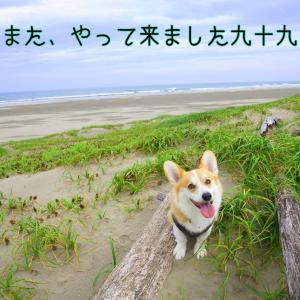 ☆見えない…☆