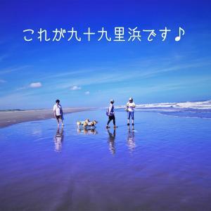 ☆九十九里浜の美しさ☆