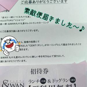☆&WAN☆【素敵便届きました】