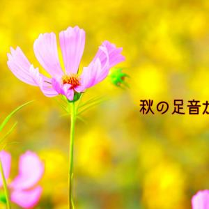☆秋の足音☆