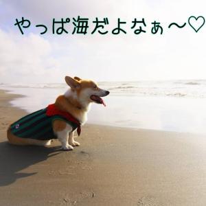 ☆デッカイ海で走る☆