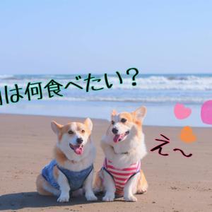 ☆【海の撮影会】裏ストーリー☆