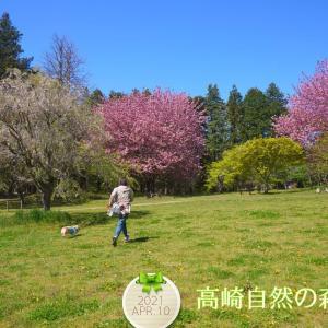 ☆高崎自然の森公園☆【前編】