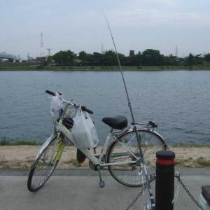 106戦 鯉釣りアタリ無し (2020年 第12戦目)