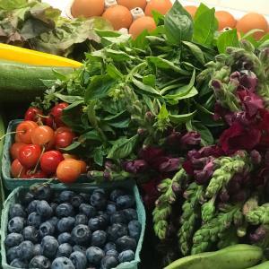 グリーンマーケットで夏野菜を買う