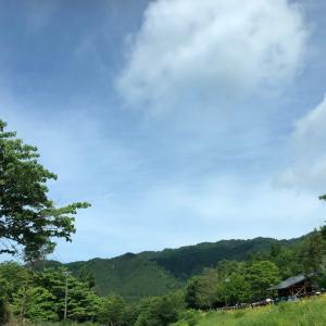 営業マン 新聞デビューw