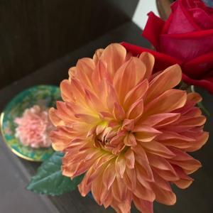営業マン お花を♪