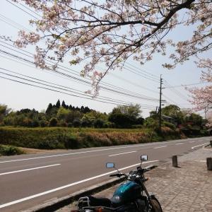 桜×CB400four