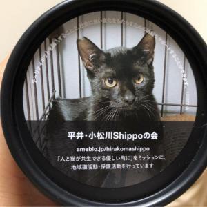 LUSH JAPAN様<ニューチャリティポット>当会ラベル発売中!