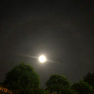 牡羊座満月✨望みを叶える振り返りのポイント