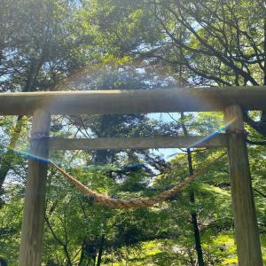 日本の暦も宇宙のゲートを伝えてた?ライオンズゲート特別企画も実施中