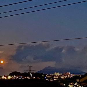 明日の満月は大安!虎の日!実りを倍増するヒミツ♡