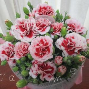 母の日ギフト届きました!お花とハーバリウムディフューザーのギフト