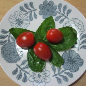 セリア100均の北欧風のお皿がすてき!サラダや盛り蕎麦など万能です