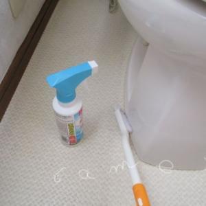 トイレ掃除に役立つ100均グッズ♪排水口ブラシでラク家事