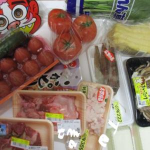 わが家の食費3万円と生活保護の外国人が多くなっている件