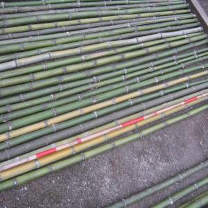 竹をトンギラせる。