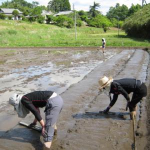 小学2年生とお米の種蒔きをしました。